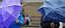 Pioggia e raffiche di vento (Foto d'archivio)