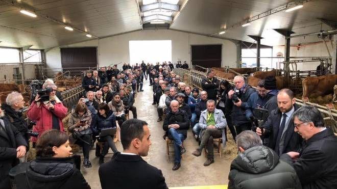 Di Maio a Cavriago: comizio in una stalla