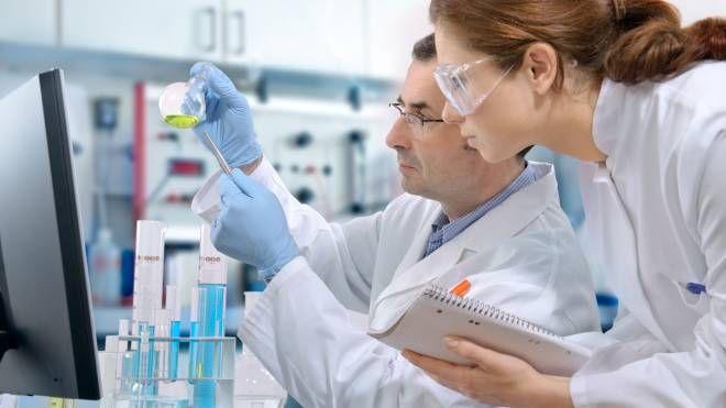 Test di laboratorio, immagine di repertorio