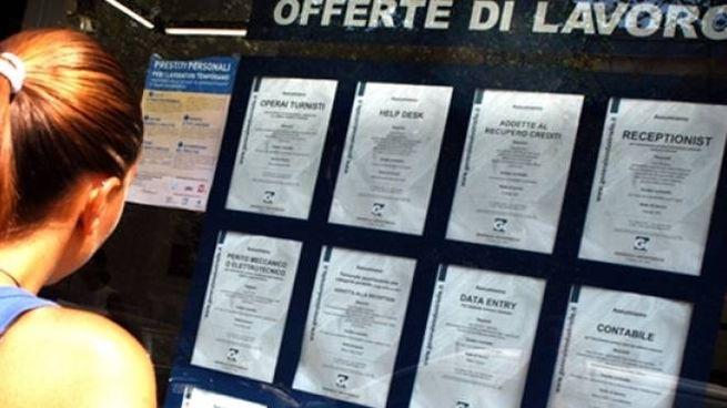 Cerchi Lavoro Ecco Le Offerte Della Provincia Di Pesaro