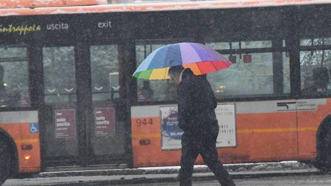 La nevicata del 22 febbraio a Bologna (FotoSchicchi)