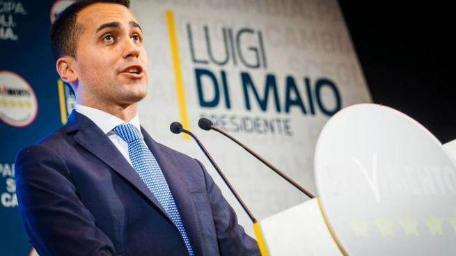 Luigi Di Maio (Ansa)