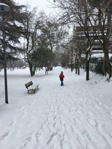 Meteo Emilia Romagna, neve e gelicidio  Chiusi tratti delle