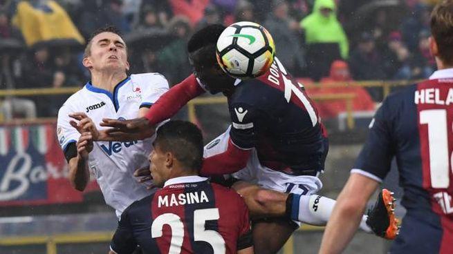 Bologna-Atalanta 0-1 (FotoSchicchi)