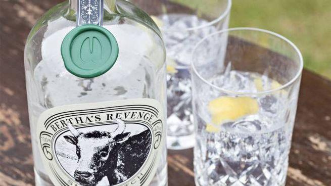 Foto: profilo Twitter ufficiale del Bertha's Revenge Gin