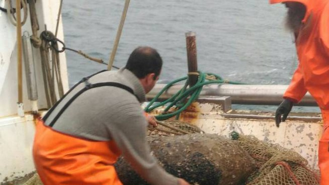La bomba pescata