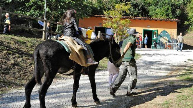Una festa al parco di Fontescodella (foto Calavita)