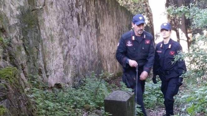 I carabinieri hanno arrestato tre spacciatori a Poggio a Caiano