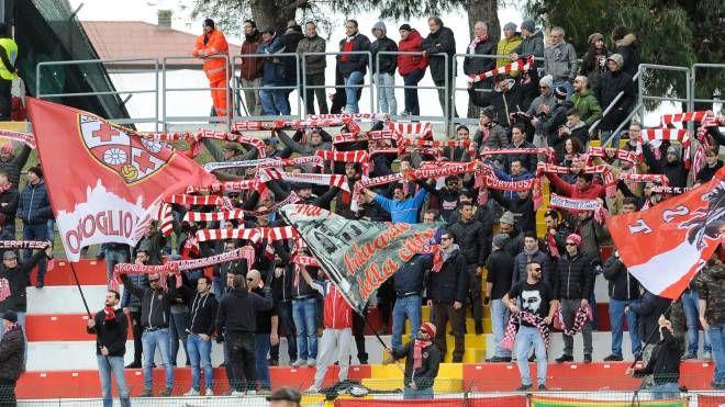 Gli ultras della Maceratese (foto Calavita)