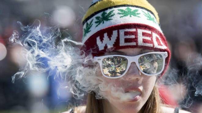 Marijuana legale in Canada (Lapresse)