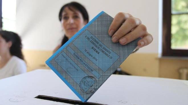 Elezioni comunali 2013 (Ansa)