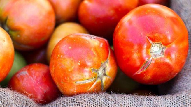 La frutta e la verdura con difetti vengono spesso scartate - Foto: JannHuizenga/iStock