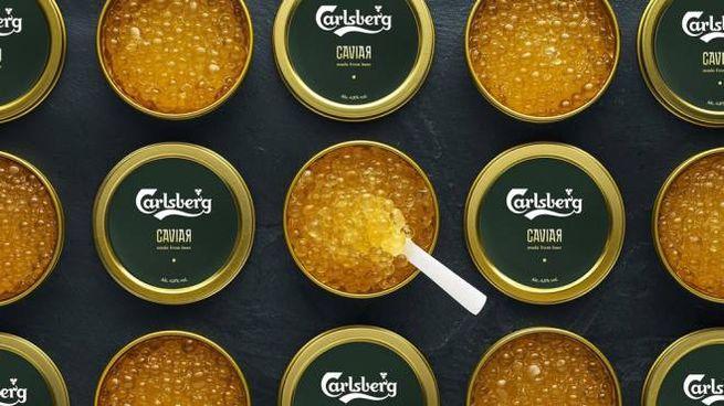 Il caviale alla birra di un noto marchio danese - Foto: twitter/cpbgroup