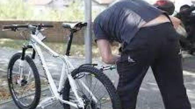 Il furto della bicicletta a tre ruote del ragazzo down  è avvenuto dal giardino di casa nella frazione  di Avane  (foto d'archivio)