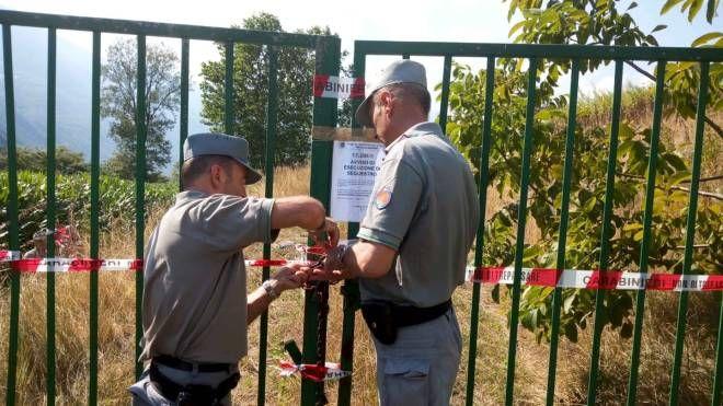 I carabinieri forestali al lavoro