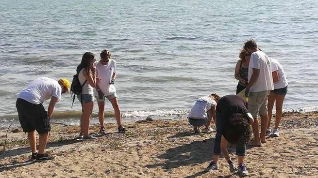 Bagnanti sul lago (foto di repertorio)