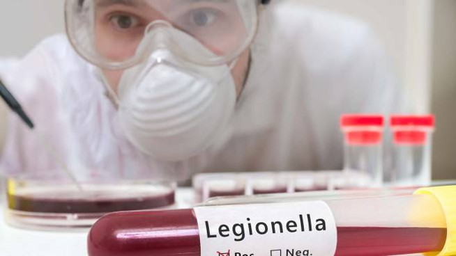 Legionella (foto repertorio)