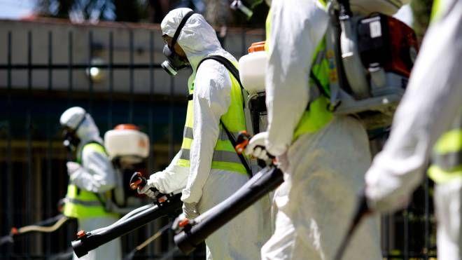 Allarme zanzara killer, disinfestazione in corso
