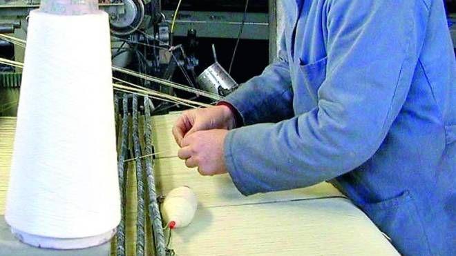 Mani che lavorano per il fisco
