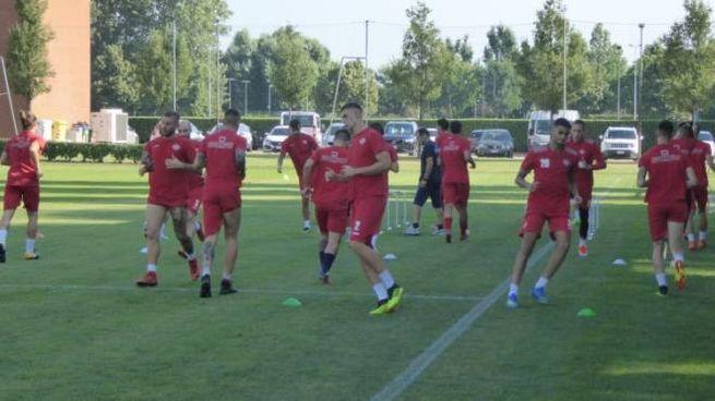 La squadra grigiorossa tornerà ad allenarsi al Centro Arvedi giovedì 16 agosto