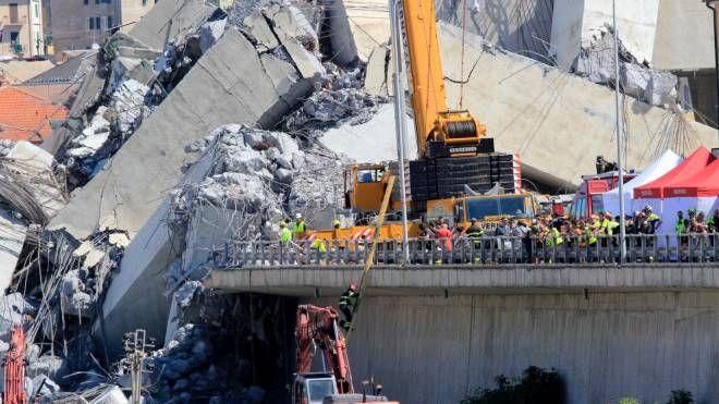 Genova, i soccorsi tra le macerie del ponte Morandi (Newpress)