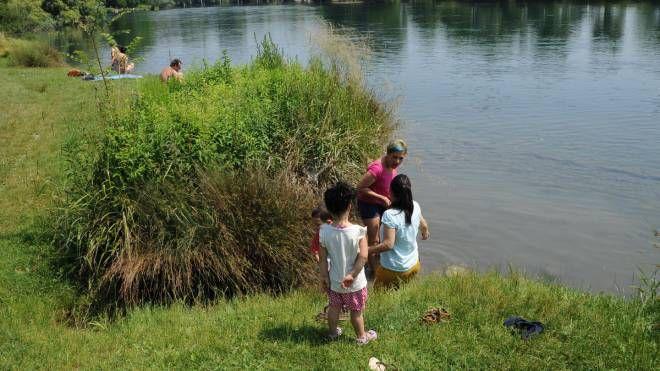 L'area fluviale del Pignone