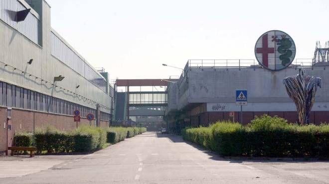 IN PRIMA LINEA Il sindaco Michela Palestra vuole dare una vocazione all'ex area industriale insieme ai comuni di Lainate e Garbagnate