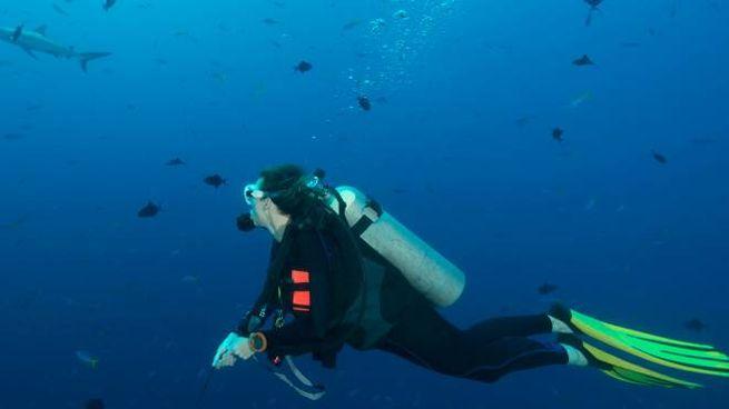 Sub nell'oceano