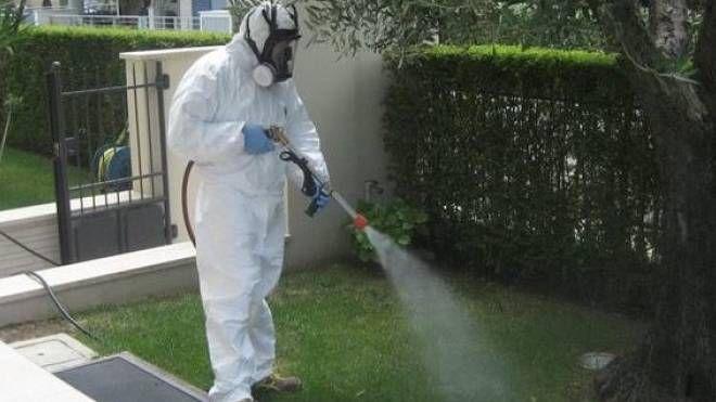 Disinfestazione dalle zanzare