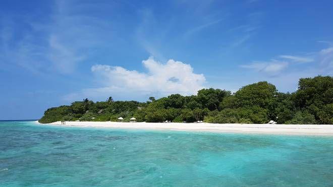 Un'isola delle Maldive