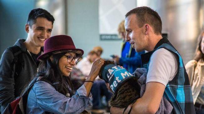 I cuccioli antistress in azione - Foto: courtesy of Denver International Airport