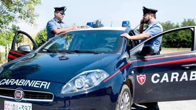 L'operazione è stata condotta dai carabinieri (foto d'archivio)