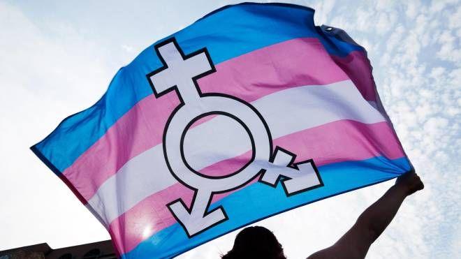 A New York si potrà scrivere 'Gender X' sul certificato di nascita (Ansa)