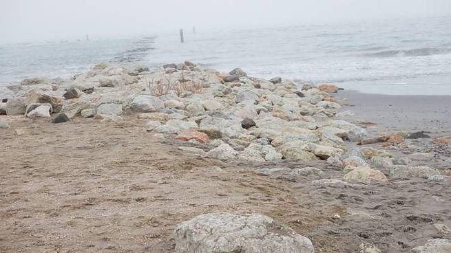 Il litorale ravennate