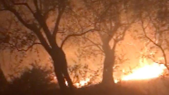 L'incendio sul Monte Serra