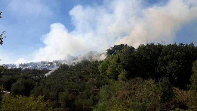 L'incendio di Buggiano (Foto Vab Massa e Cozzile)