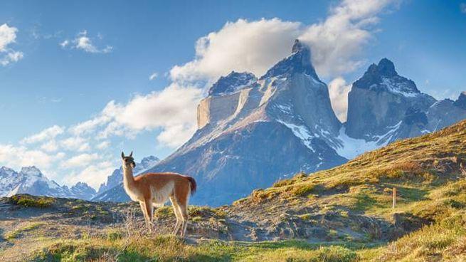 Il Parco Torres del Paine, nella Patagonia cilena - Foto: espiegle/iStock