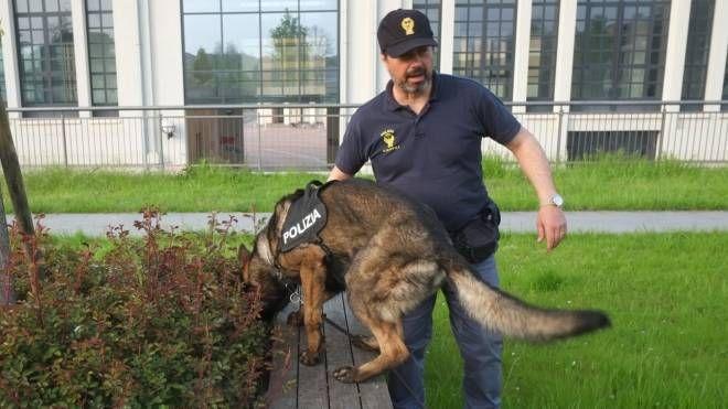 Forlì, controlli di polizia (foto Frasca)
