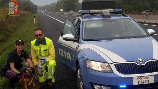La polizia stradale con il cane salvato