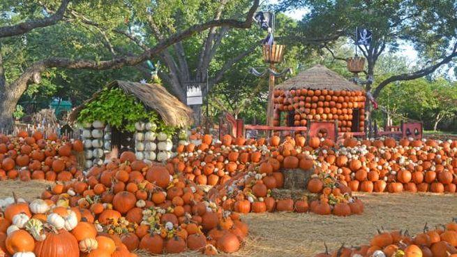 Il Pumpkin Village, costruito con 90mila zucche - Foto: www.dallasarboretum.org