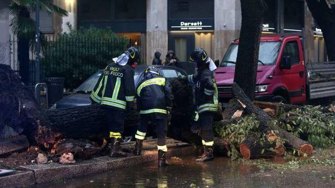 Danni del maltempo a Milano