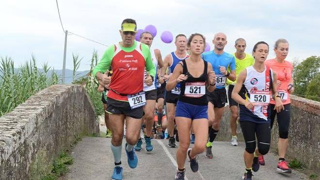 Maratonina di Agliana (foto Regalami un sorriso onlus)