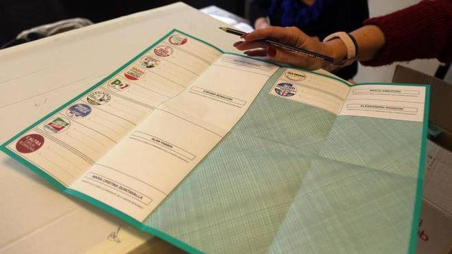 Elezioni regionali (Ansa)