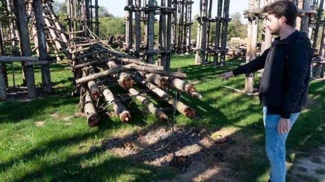 Gli alberi crollati nella Cattedrale vegetale