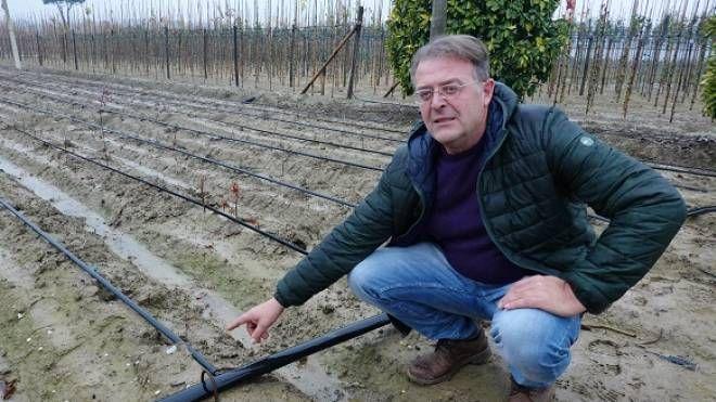 Paolo Chiti nel campo saccheggiato (che non è suo)