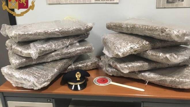 I 10 sacchi contenenti 52 kg di marijuana sequestrati dalla Polstrada in A1