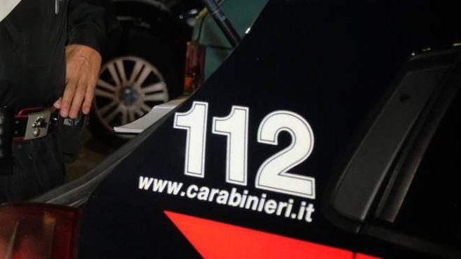 Carabinieri, foto generica (Newpress)