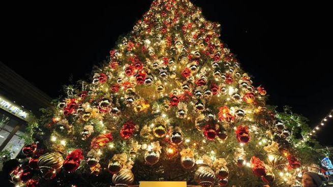 Pranzo di Natale, a tavola con 20 euro a testa - Cronaca - lanazione.it