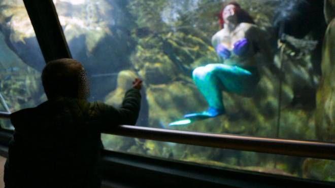 L'incontro tra il piccolo malato e la principessa Ariel