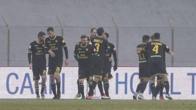 Carpi-Livorno, esultanza di Ivan Pedrelli dopo il gol (LaPresse)